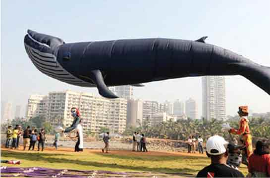 25th International Kite Festival